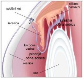 glaukom otjecanje iočne vodice